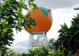 The big orange. Harvey. Stop on way down.