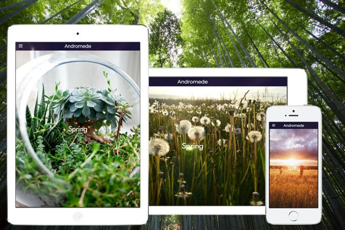 Our Andromede Template (perfect to take maximum advantage of your pictures and different screen sizes)  #design #template