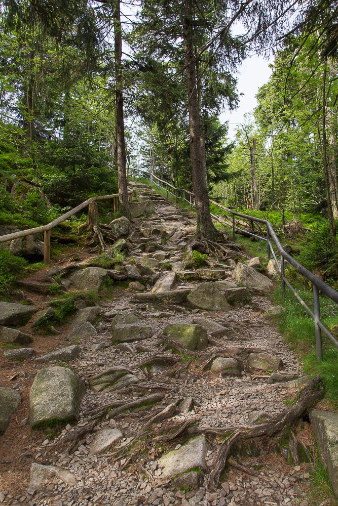Der Aufstieg zum Achtermann bei Braunlage im Harz
