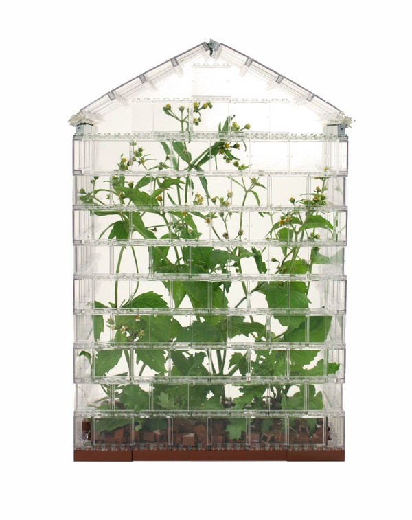 The Lego Greenhouse is a functioning greenhouse built entirely from Lego; the walls, the floors, even the earth is Lego. The plants and vegetables growing inside are however, entirely real.