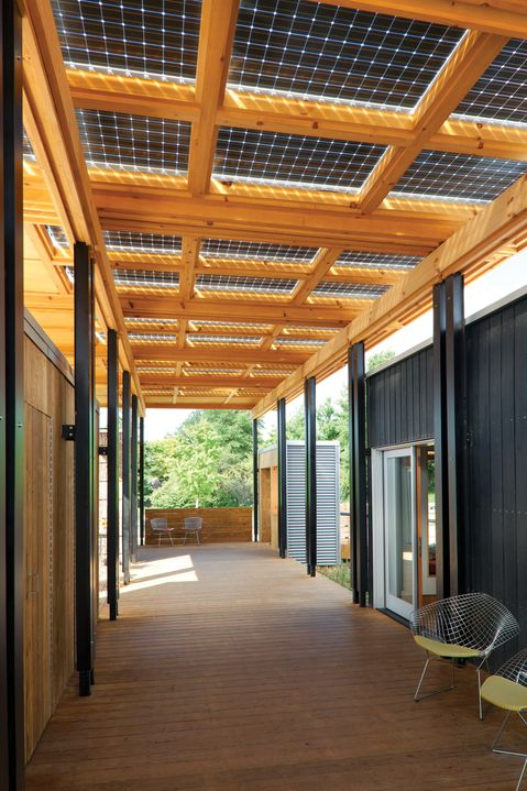 Solar panels as a porch cover. (Allow light to filter through and collect both direct and reflected light.)