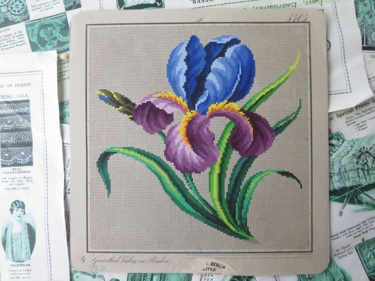 Antique Hand Painted Berlin Woolwork Embroidery Chart- Iris- Grunthals Verlag