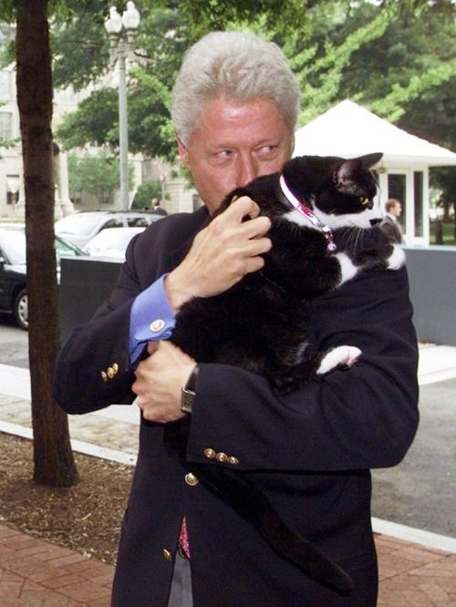 Imágenes Día del Gato Internacional World Cat Day Socks y Bill Clinton juntos beso