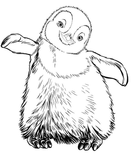 Penguin Coloring Book – Slavyanka | 664x560