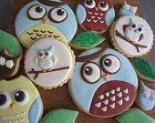 Owl Cookies - Custom Gourmet Sugar Cookies