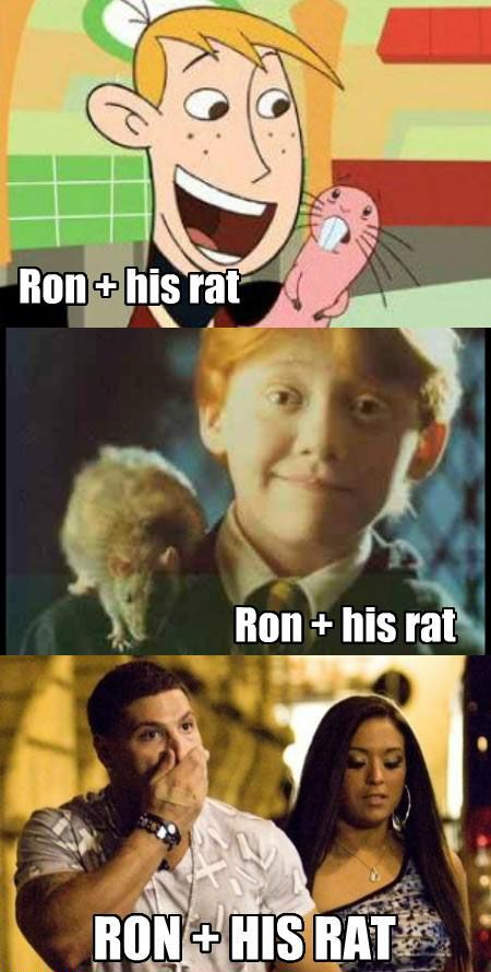 Ron and his rat: Ron, Jersey Shore, Giggl, Funny Stuff, Harry Potter, Things, Hilarious, So Funny, Rats
