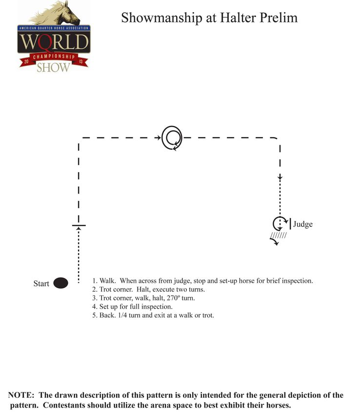 Try this Showmanship at Halter pattern from the 2013 Adequan Select World…
