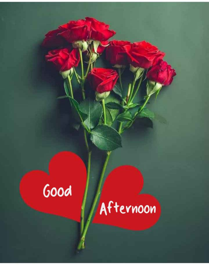Good Afternoon Images With Love Flowers Good Morning Images Quotes Wishes Messages Greet In 2020 Good Morning Flowers Gif Good Morning Flowers Good Morning Roses