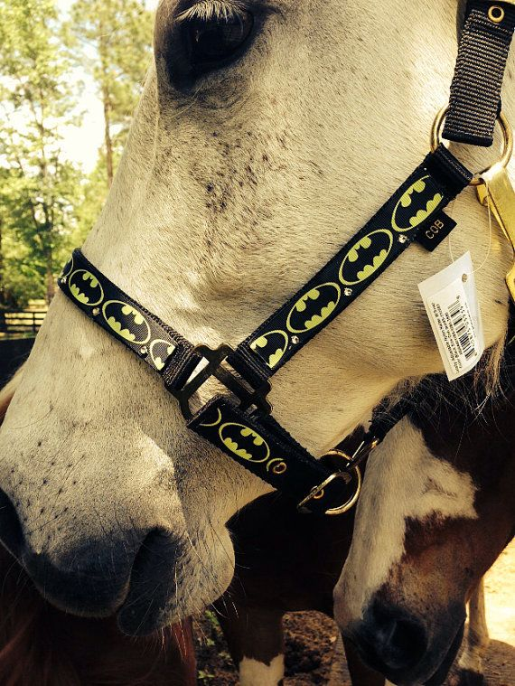 Batman horse halter on Etsy, $21.00