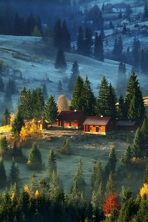 First Frost, Carpathian Mountains, Europe!