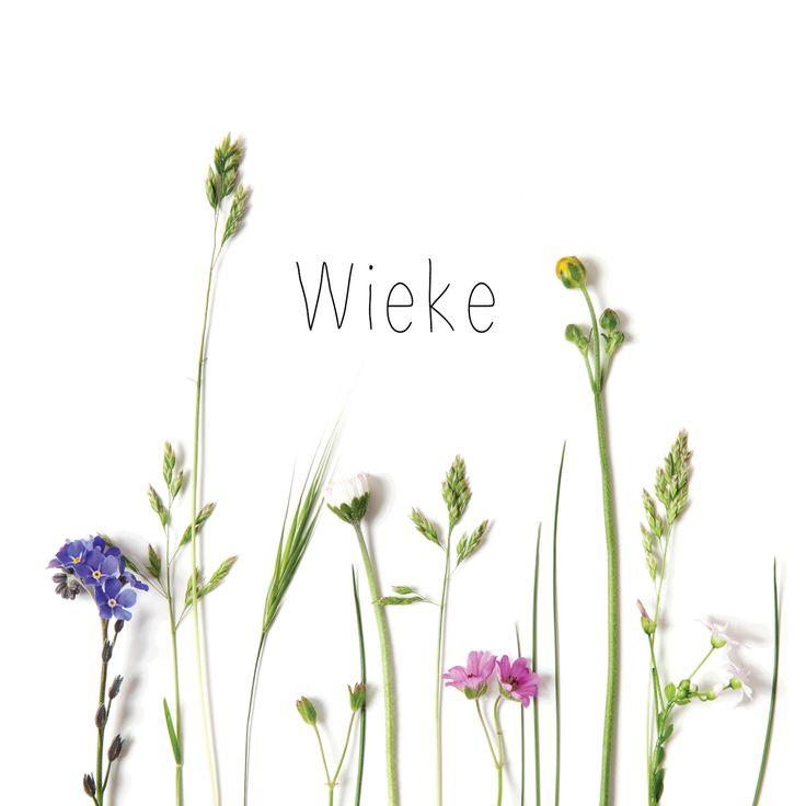 Geboortekaartje 'Bloeiende Weide'