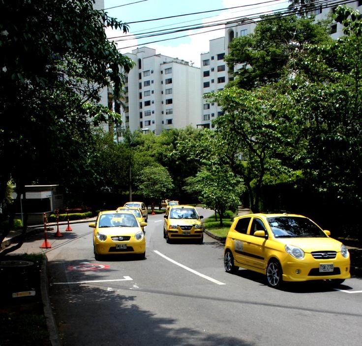 Calle 7 Sur. Calle 7 Sur. Durante el día dejaron de transitar por la calles de Medellín 450 mil vehículos, según balance a las 4:00 de la tarde. Sin embargo, se sancionaron 316 conductores.
