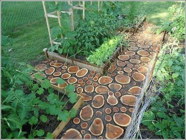 Awesome garden walkway