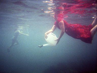 Strange Aquarium 2002- 2003: Cath Barcan