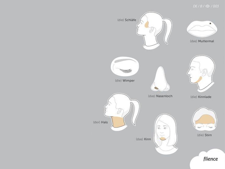 Human-face_003_B_de #ScreenFly #flience #german #education #wallpaper #language
