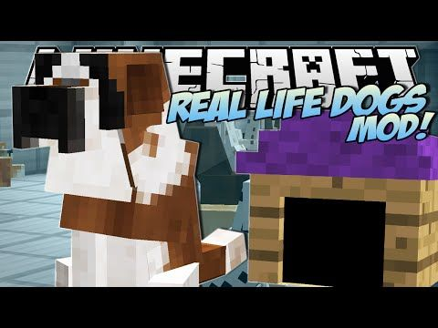 Minecraft | REAL LIFE DOGS MOD!! (Puppies, Kennels & More!) | Mod Showcase - YouTube