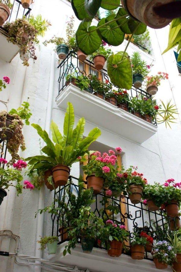 20 imágenes inspiradoras para disfrutar del balcón en primavera - Guía de Jardín Small Balcony Garden, Balcony Plants, House Plants Decor, Small Patio, Indoor Garden, Indoor Plants, Outdoor Gardens, Balcony Ideas, Plant Design