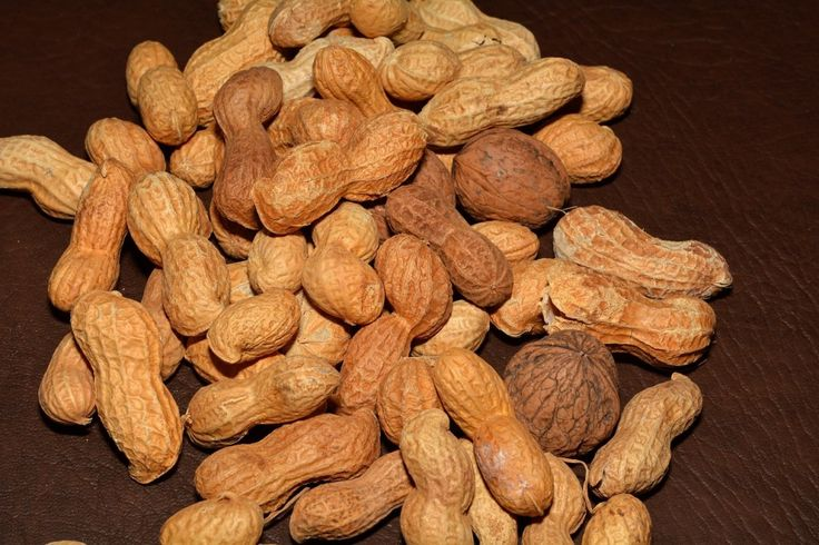 Ground Nuts : 12 Foods You Can Use On Your Face Instead Of Beauty Products | TOAT
