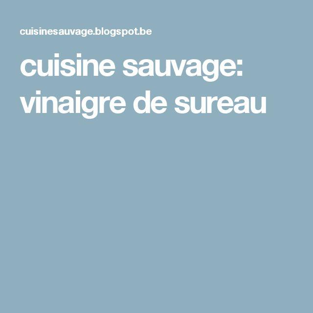 cuisine sauvage: vinaigre de sureau