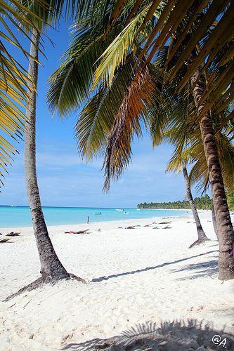 Like a paradise, #Saona island. Republic Dominicana