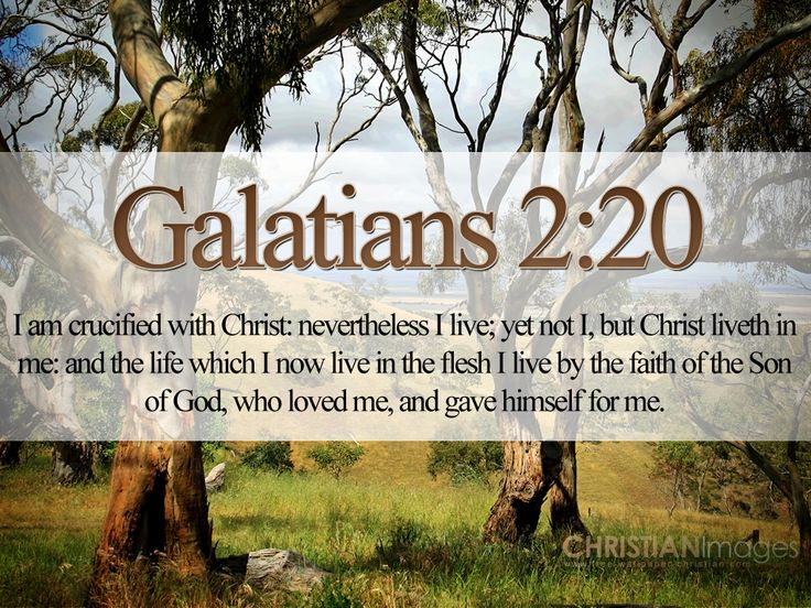 I Am Crucified With Christ Nevertheless Live Yet Not But Liveth In Me And The Life Which Now Flesh By Faith Of