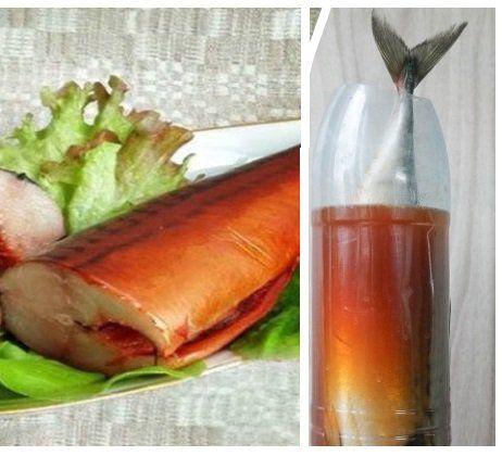 Засолка скумбрии в бутылке с луковой шелухой: пошаговый рецепт