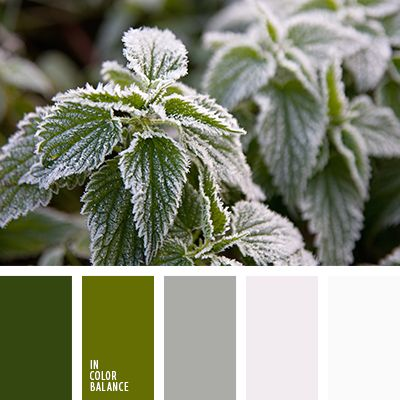 Fresh, subtle and unobtrusive palette. Deep shades of green on a background of fine play of light gray and white. Gamma capable of breathing life, to give strength to give inspiration. This color combination, ideal for both the office and the home environment. As the pitch can choose a lighter shade of green. It is visually expand the space.