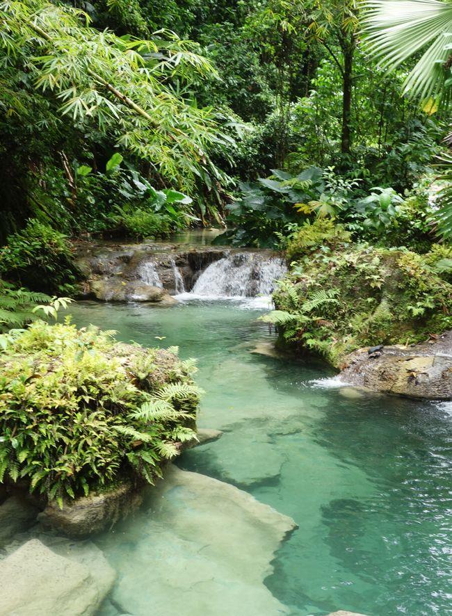 Bucket list Alert! Reach Falls in Port Antonio, Jamaica