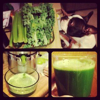 """How to make Mean Green Juice from the movie """"Fat, Sick and Nearly Dead"""" #MyVeganJournal"""