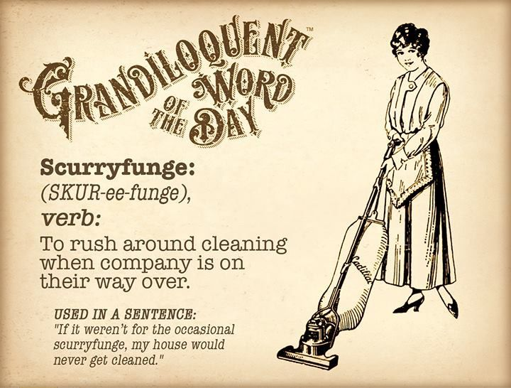 other words for cleaning service