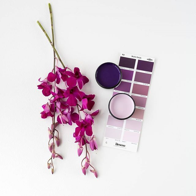 How do you like your purple? The deep intense violet shades of Resene Blackcurrant, or the soft and delicate shade of Resene London Hue? #Resene #Resenepurple #Resenelovescolour #colourmatching #springbloom #moodboard #colourpicking #flatlay