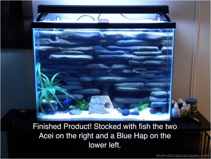 1000 ideas about aquarium backgrounds on pinterest for Fish tank background ideas