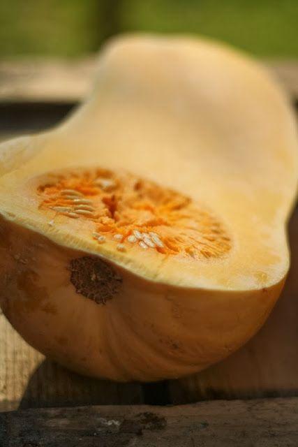 Pečená máslová dýně
