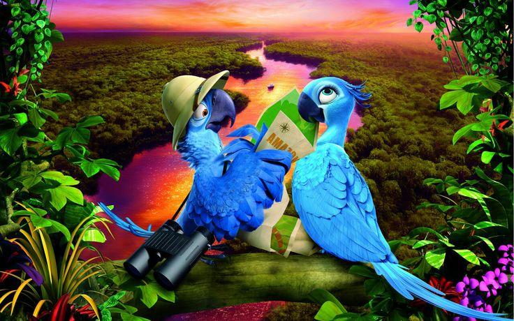 Rio Parrots Two Cartoons Animals