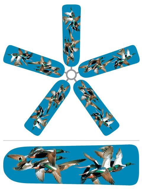 42 Best Collegiate Ceiling Fan Blade Covers Images On