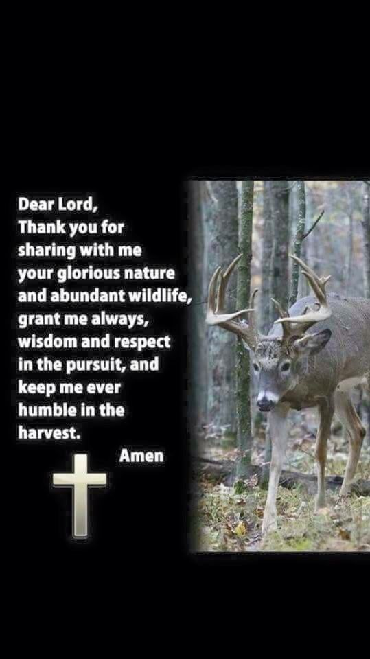 Say a prayer every time I harvest an animal out of respect