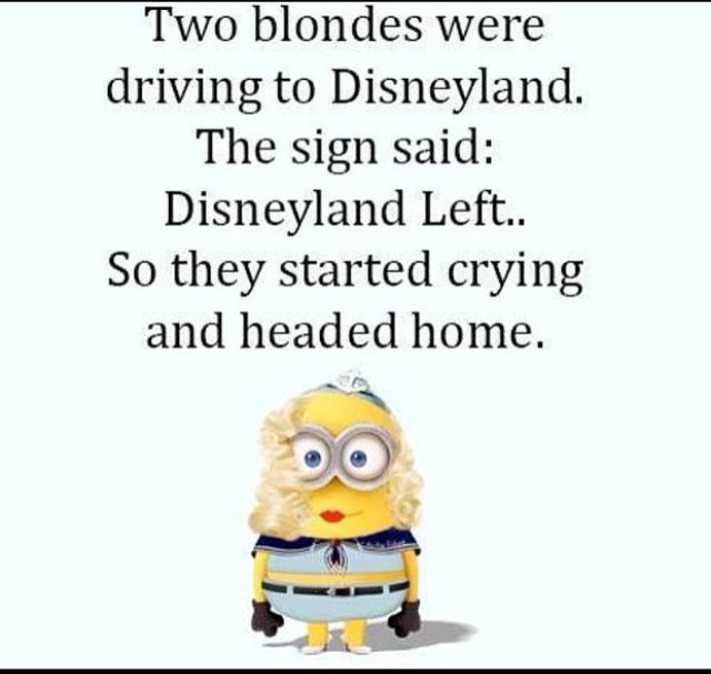 Image result for blondes are stupid