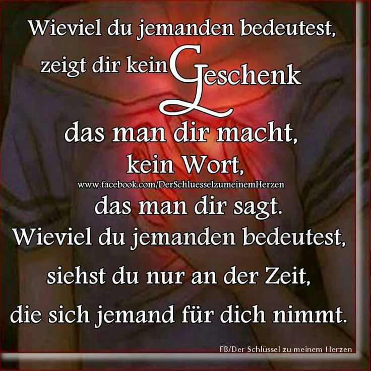 ...morgens - mittags - abends - nachts...♡
