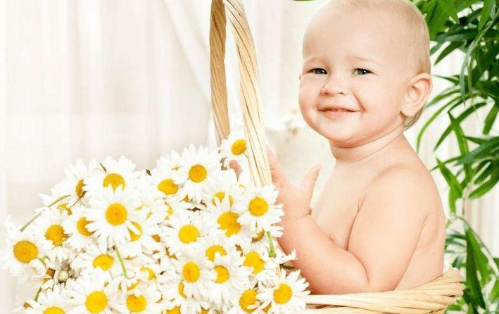 Как заваривать ромашку для новорожденных
