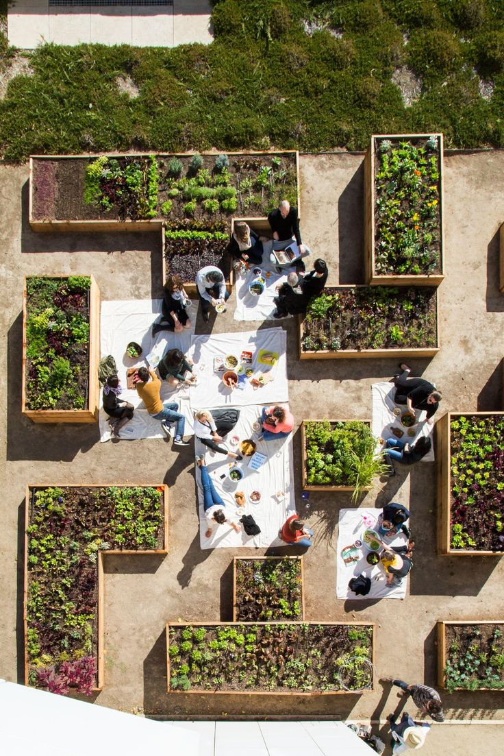Urban gardening planters - A Not Sad Desk Lunch On Another Level