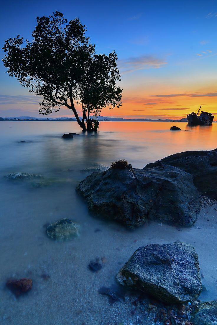 Tree Alone in Sunset  - by Dwi Yulianto