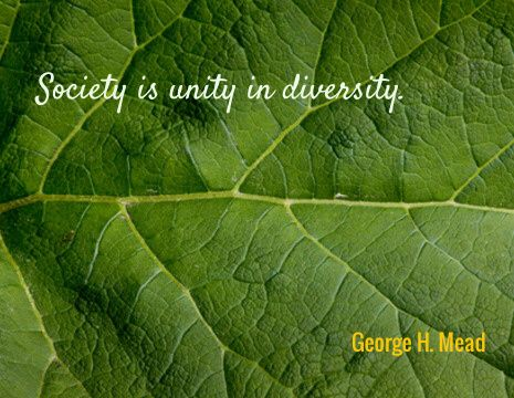 Society is unity in diversity.