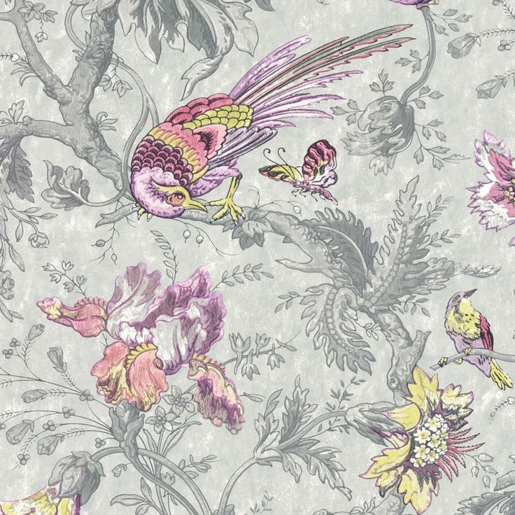 Crowe Hall Lane - Charme - Bird Wallpaper - Shop by Style - Wallpaper