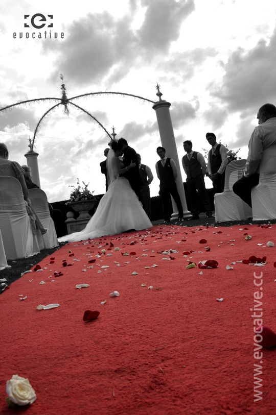 Artistic black and white with feature red colour of flowers and petals on the carpet with bride and groom getting married at Glengariff Historic Estate and Winery. #WeddingPhotography