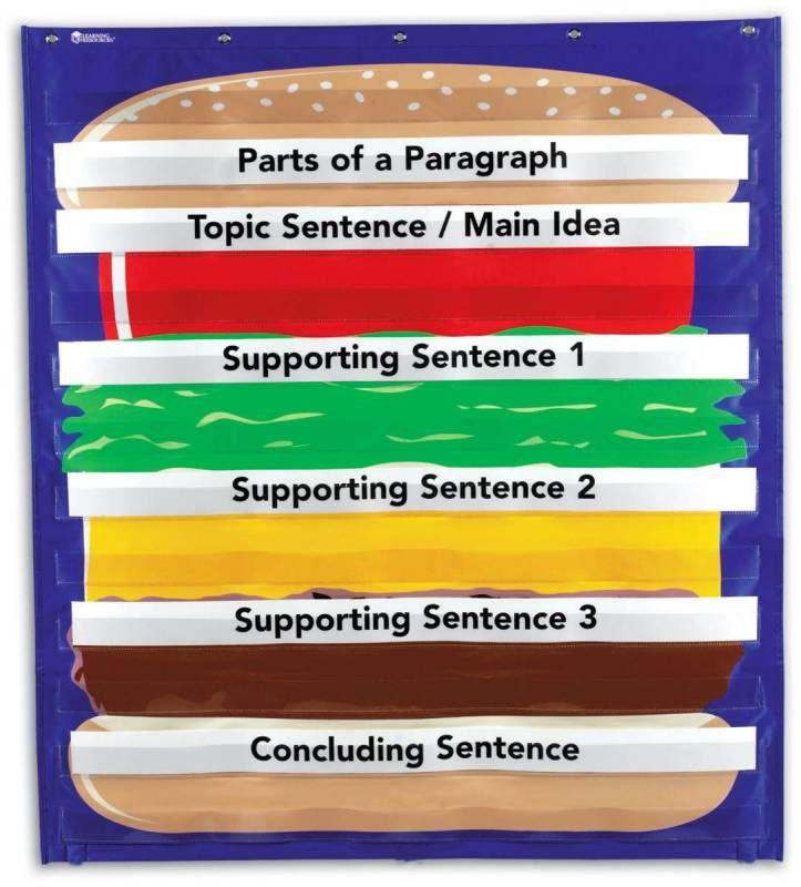 Essay writing hamburger model