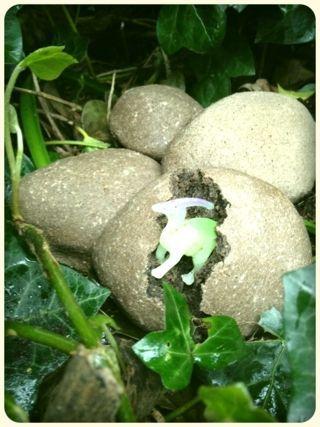 tutorial on making a dinosaur egg #abcdoes #dinosauregg #provocationsforlearning #engagingboys