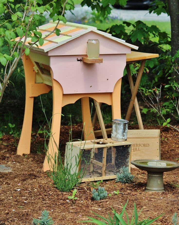 Honey hive dating
