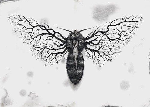 art,bug,drawing,fly,surreal,illustration-7a8540cf4858c229dd8a4feda7e4fc86_h.jpg (500×357)