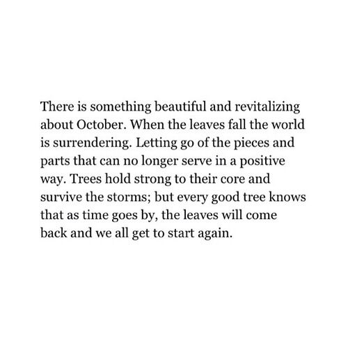 Beautiful and revitalizing...that is a perfect description. I've always felt this way about fall and thought it