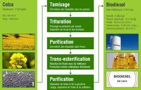 Comment produit-on le biodiesel ?